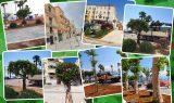 ZTL e verde curato: l'estate 2021 di Gaeta inizia così