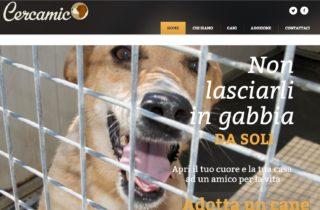 Presentato oggi in Aula Consiliare del Comune di Gaeta il sito www.cercamico.it !